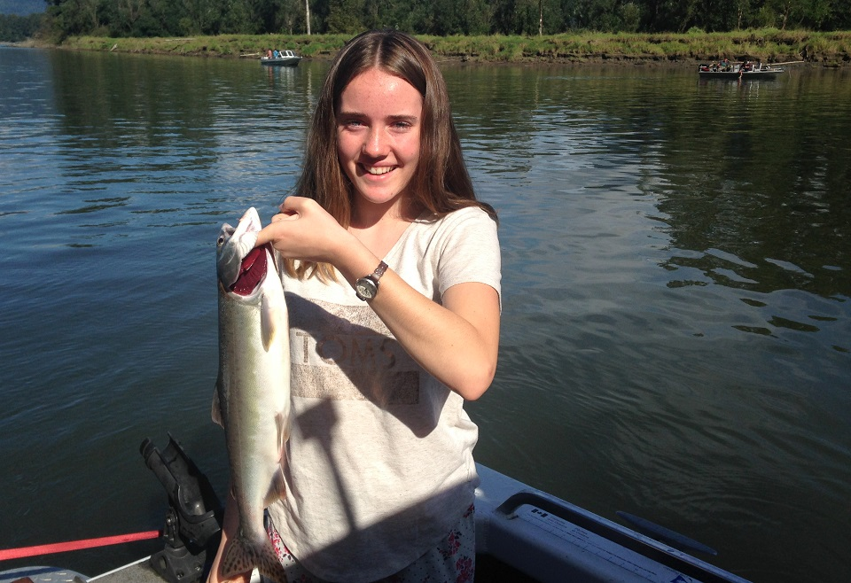 pink salmon fishing bc, fraser river salmon fishing, pink salmon fishing fraser river, pink salmon fishing, pink salmon fly fishing, pink salmon, pink salmon flyfishing bc
