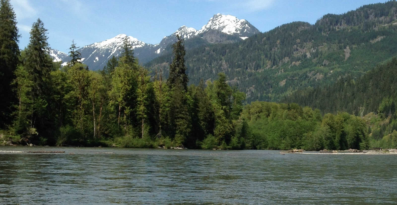 vancouver fishing, vancouver trout fishing, vancouver fly fishing, bull trout fishing, fly fishing for bull trout, squamish river bc