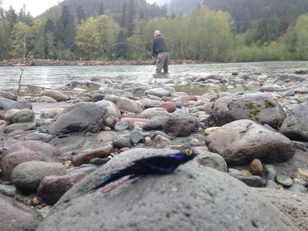 flyfishing, fly fishing, fly fishing vancouver, fly fishing squamish river