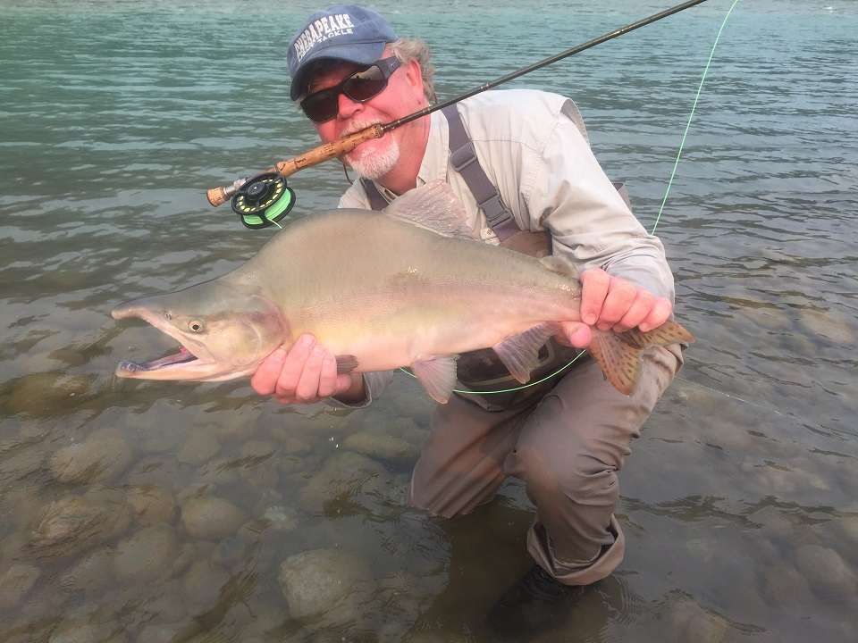 guided fly fishing, fly fishing report, vancouver, vancouver fly fishing report, pink salmon fly fishing vancouver, pink salmon fly fishing, pink salmon fly fishing bc