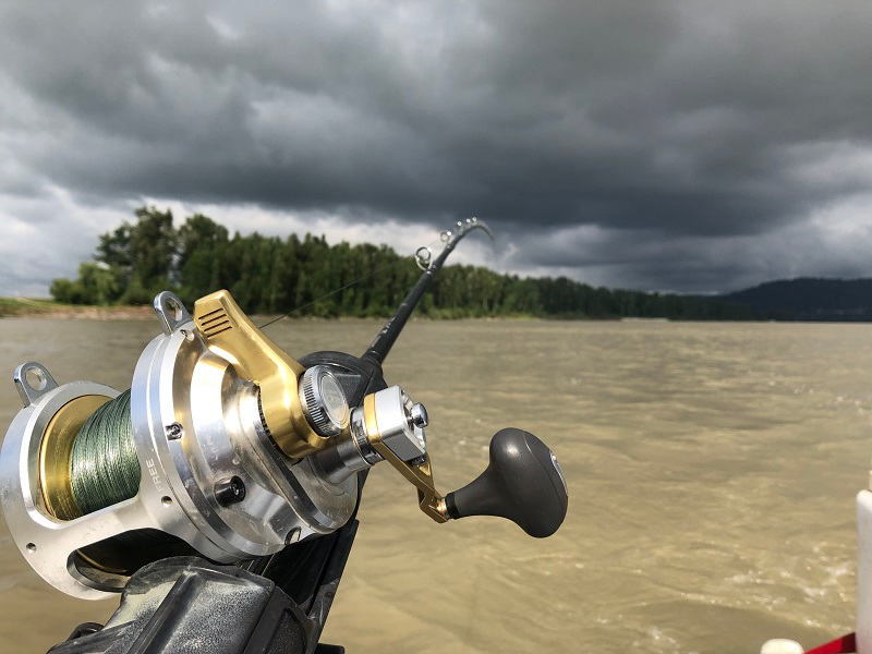 2020 best fishing, best fishing in bc, fishing season bc 2020, sturgeon fishing bc 2020, 2020 fraser river fishing forecast, 2020 fraser river fishing season, shimano talica 20