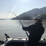 sturgeon, white sturgeon, sturgeon fishing, fraser river sturgeon, bc sturgeon, bc sturgeon fishing, big sturgeon